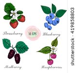 blueberries  raspberries ... | Shutterstock . vector #419858803