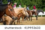 western horses at show | Shutterstock . vector #419953633