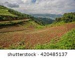 beautiful landscape in... | Shutterstock . vector #420485137