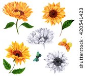 A Set Of Sunflowers And...