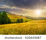 large meadow with mountain... | Shutterstock . vector #420643087