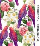 beautiful parrots and big...   Shutterstock . vector #420658813