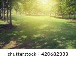 Blur View Tree In Garden. Gree...