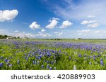 bluebonnet field and blue sky... | Shutterstock . vector #420889903