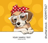 Stock vector puppy beagle in a glasses and in a headband vector illustration 420997567