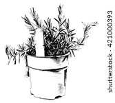 hand drawn rosemary inside a... | Shutterstock .eps vector #421000393