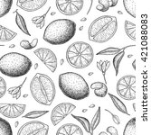 vector hand drawn lime and... | Shutterstock .eps vector #421088083