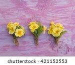 Three Yellow Primrose Flowers...