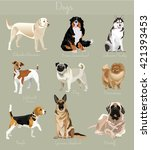 different type of dogs set. big ... | Shutterstock .eps vector #421393453