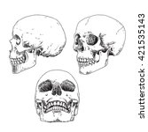set of hand drawn skulls in... | Shutterstock .eps vector #421535143