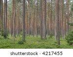mast wood | Shutterstock . vector #4217455