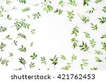 frame with flowers  branches ... | Shutterstock . vector #421762453