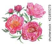 vector imitation flower peony... | Shutterstock .eps vector #421855273