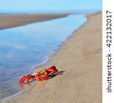 colourful red crab toy on a... | Shutterstock . vector #422132017