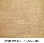 canvas background | Shutterstock . vector #422220583