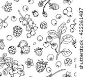 pattern of vector berries and... | Shutterstock .eps vector #422361487