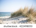 Grass Beach With Sand On Sunny...