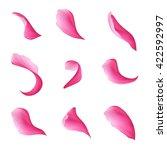 Digital Illustration  Pink...