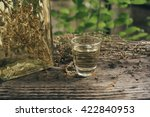 wormwood drinks in a small... | Shutterstock . vector #422840953
