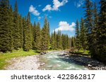 mountain river in a pine forest | Shutterstock . vector #422862817