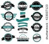 set of colorful vintage labels... | Shutterstock .eps vector #423037123