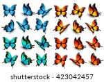 Stock vector mega collection of colorful isolated butterflies vector 423042457
