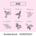 various berries. berry...   Shutterstock .eps vector #423055267