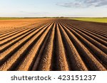 Furrows Row Pattern In A Plowe...