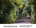 park alley in the botanical... | Shutterstock . vector #423315877