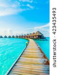 beautiful tropical maldives... | Shutterstock . vector #423435493