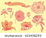 hand drawn flowers set isolated  | Shutterstock .eps vector #423458293
