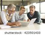 business people in a meeting...   Shutterstock . vector #423501433