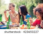multicultural group of friends... | Shutterstock . vector #423653227