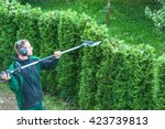 hedge trimming  works in a... | Shutterstock . vector #423739813