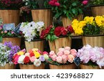 Colorful Peony  Roses And Othe...