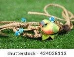 bird on green grass | Shutterstock . vector #424028113