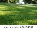 grass background   Shutterstock . vector #424103857