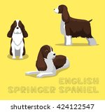 Dog English Springer Spaniel...