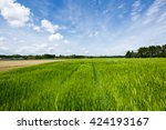 blue sky at st. hubert  ... | Shutterstock . vector #424193167