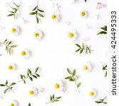 Stock photo floral frame with chamomile flower and green branches flat lay top view 424495333