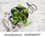 Fresh Garden Herbs And Scissor...
