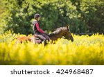 Young Woman On A Horse Ride In...