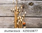 Dry Plants On Rustic Wooden ...