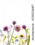 summer flowers | Shutterstock . vector #425023687