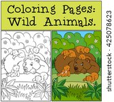 coloring pages  wild animals.... | Shutterstock .eps vector #425078623