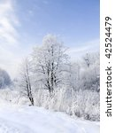 winter scenery of frosted...   Shutterstock . vector #42524479