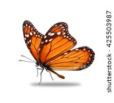 beautiful monarch butterfly... | Shutterstock . vector #425503987