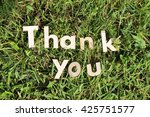 thank you lettering.wood... | Shutterstock . vector #425751577
