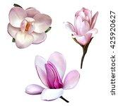 set of illustrations of... | Shutterstock . vector #425920627
