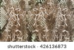 Stock photo snake skin background 426136873